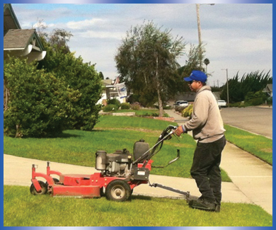 residential_landscaping_maintenance